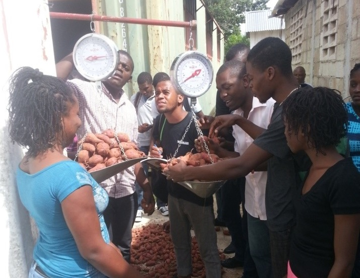 cropped-may-2016-1-of-2-students-evaluating-sweet-potato-harvest